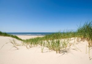 Strand Camperduin - Personeelsfeest met Coverband The Hits